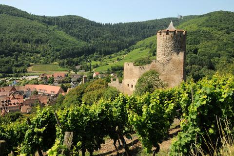 chateau-kaysersberg-panorama.png